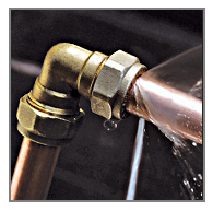 download (1)
